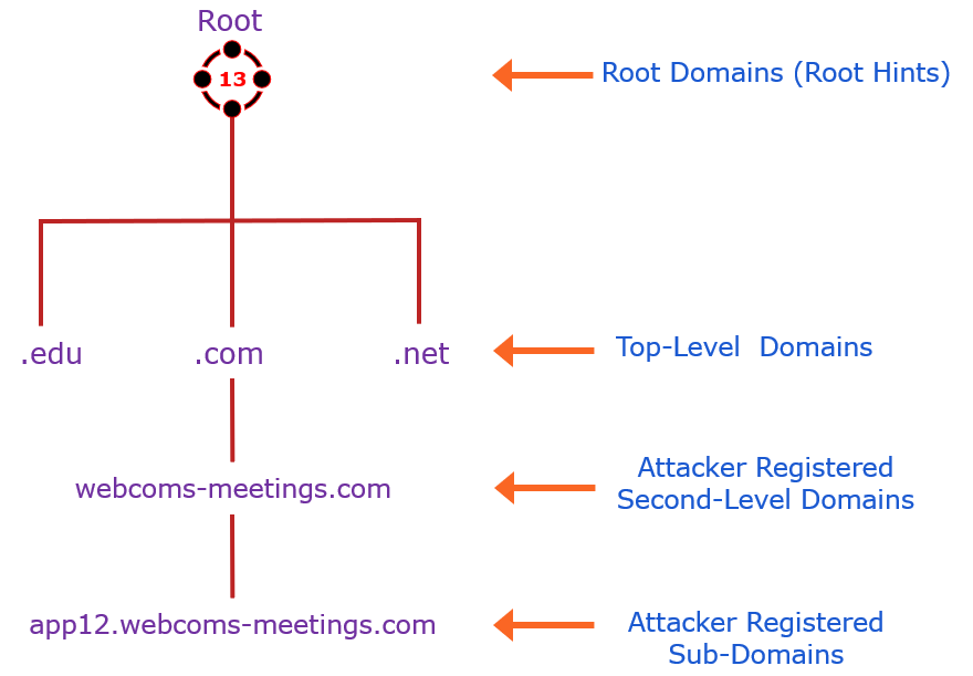 DNS structure